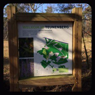 Geocaching De tijd - Teunenberg