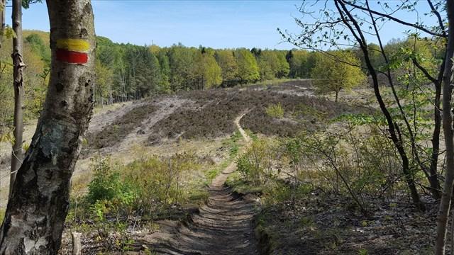 De Hertog - Geocaching Aarschot