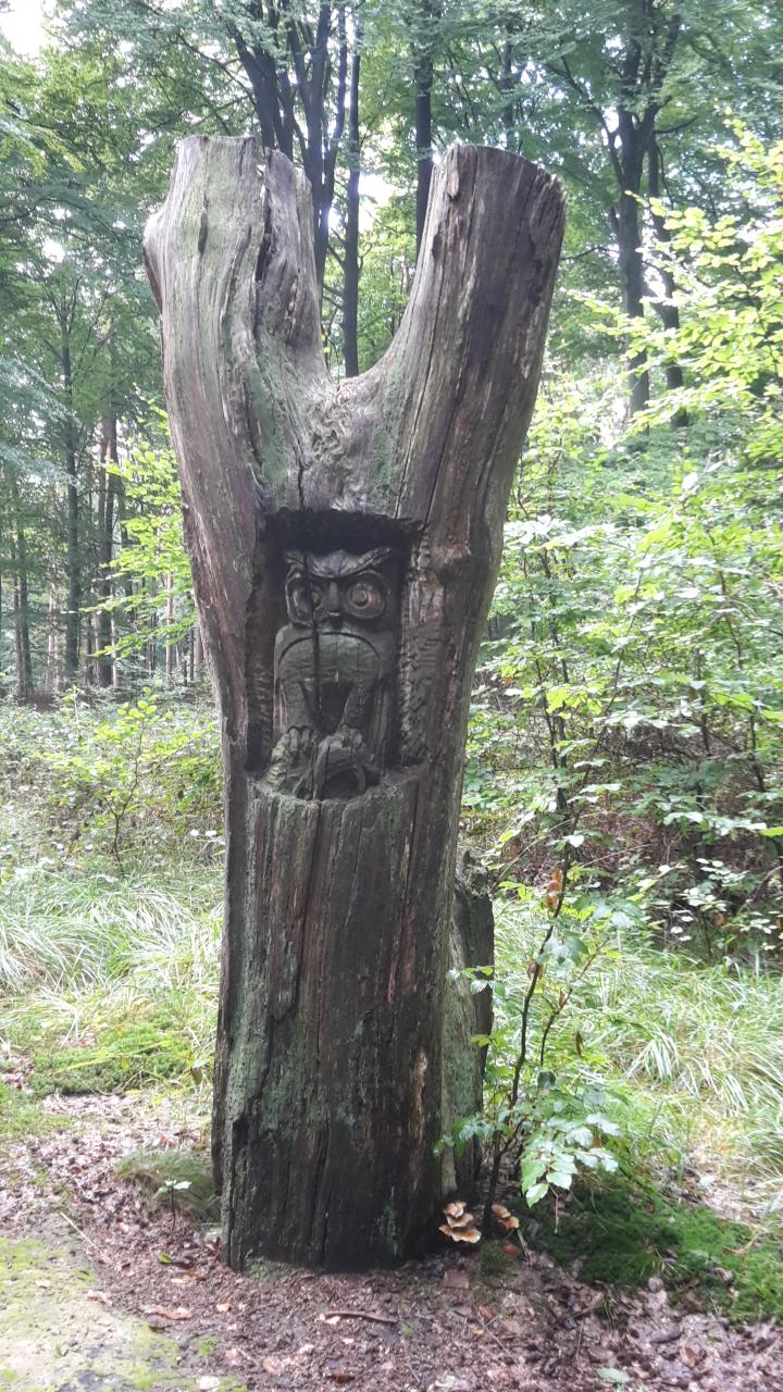 Rondje Vlaanderen - Oud-Heverlee