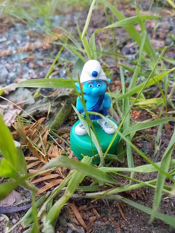 Smurf geo-art - smurfencache