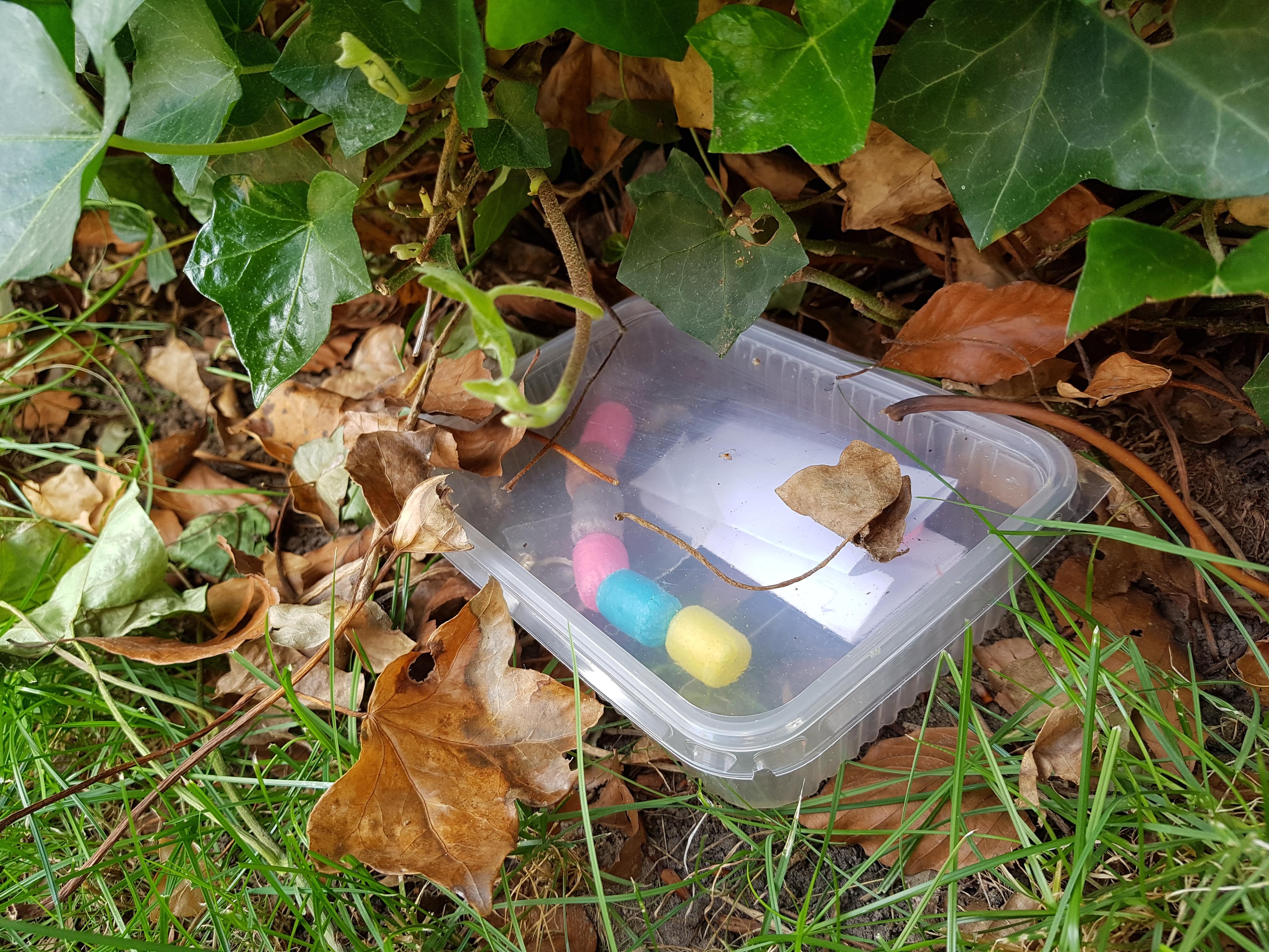 Plastic afhaaldoos Geocaching