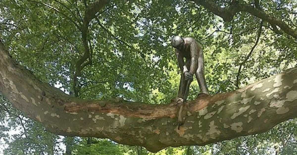 Virtuele cache - kunst in een boom in Amsterdam