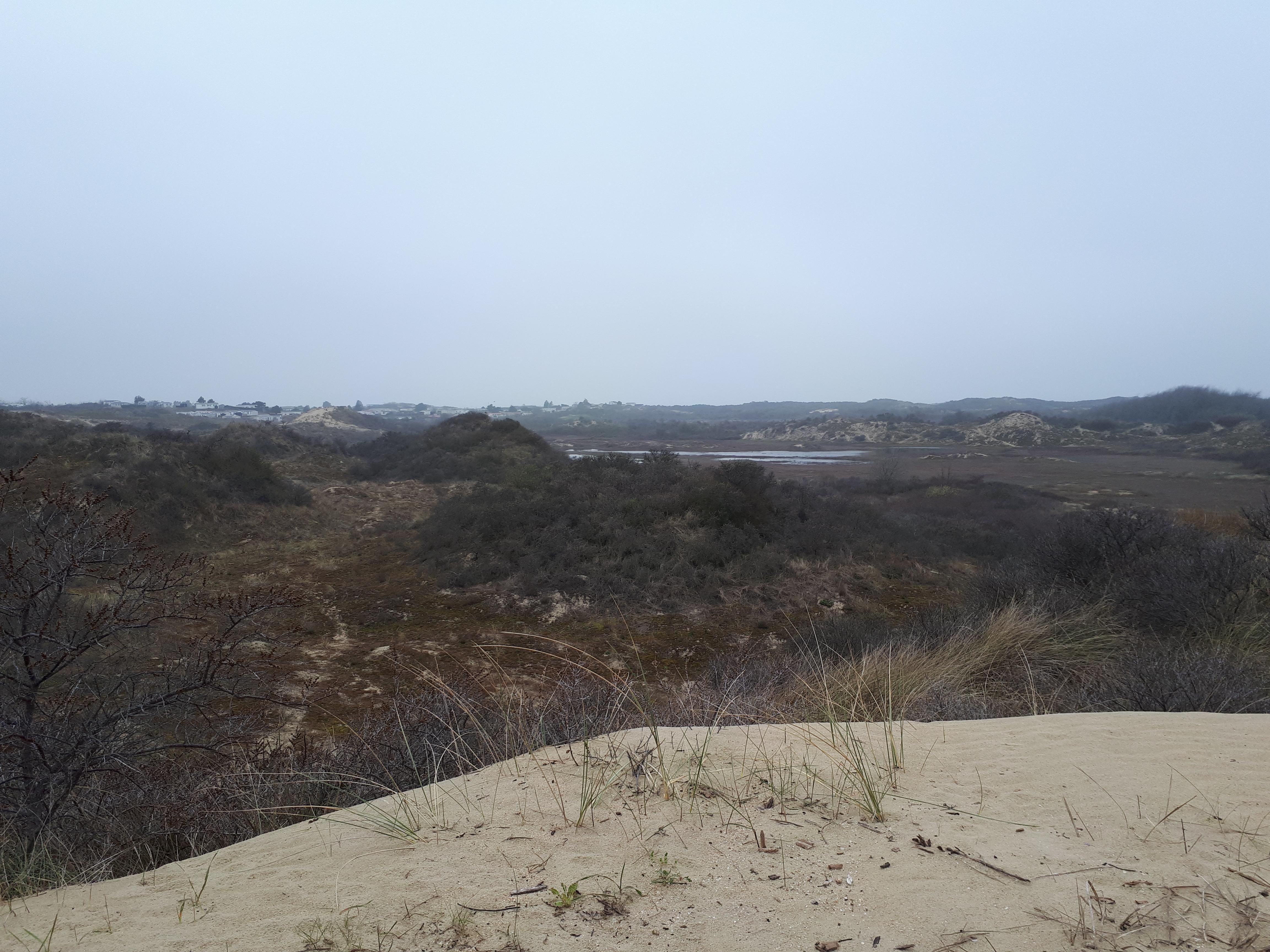 Geocaching - Zandbak reeks De Panne